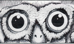 thomas stronblah moth